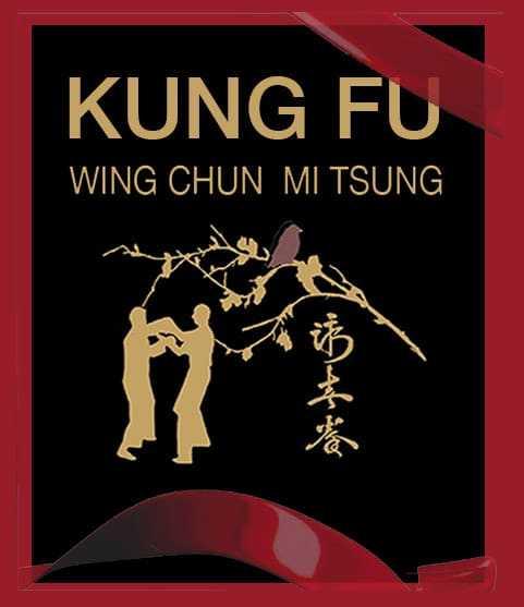 offre 2018 Wing Chun Bordeaux